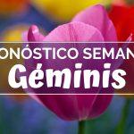 Pronóstico Semanal Géminis (del 18 al 24 de febrero)