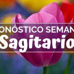 Pronóstico Semanal Sagitario (del 18 del 24 de febrero)